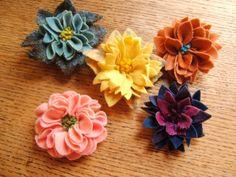 proddy flowers