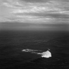 A sea serpent stirs in the water. Famous Legends, Fantasy Words, Modern Hepburn, Shot In The Dark, Sea Serpent, Wide World, Water Lighting, Black Sea, Yuu