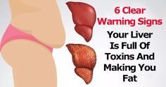 The liver is one of the most important organs in your body, which responsibility is to transforms toxins into waste. This waste is later...