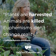 Daily Dose of Compassion: Euphemisms Don't Change Reality Vegan Facts, Vegan Memes, Vegan Quotes, Why Vegan, Vegan Vegetarian, Vegan Food, Vegan Animals, Reality Check, Statements