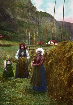"Original caption: ""Norwegian Haymakers"" Two women and a young girl putting grass to dry on a ""hesje"". The photo is probably from the Steinsdalen valley in Kvam, Hardanger. Photographer: Samuel J. Antique Photos, Old Photos, Vintage Photos, Norway Viking, Beautiful Norway, Scandinavian Countries, Norway Travel, Thinking Day, My Heritage"