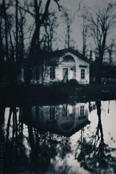 reflections of ghostly whispers drowned in a bottomless pit od lake-filled tears... the Banshee never stops