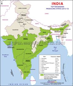 Find map of Banana producing states in India. Map highlights major banana producing states and Top 10 Banana Producing States in India. Ancient Indian History, History Of India, Geography Map, Physical Geography, Geography Lessons, Gernal Knowledge, General Knowledge Facts, Knowledge Quotes, Economic Map