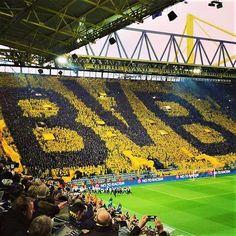 (67) Dortmund - Busca do Twitter