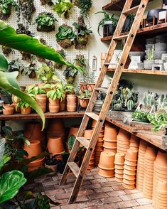 Loving the mix of green tones and terracotta on display at in Portland, Oregon. Greenhouse Plans, Greenhouse Gardening, Simple Greenhouse, Homemade Greenhouse, Indoor Greenhouse, Texas Gardening, Vegetable Gardening, Container Gardening, Garden Nursery