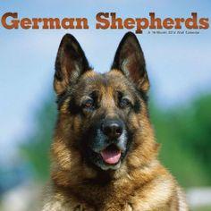 White german shepherd calendar 2014