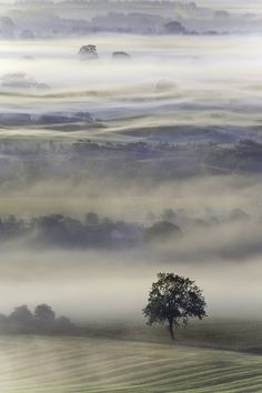 Mists of Time, A Mist shrouded Vale of Pewsey, Wiltshire at dawn. England ****This is one of the best pictures I've ever seen. Beautiful World, Beautiful Places, Magic Places, Fotografia Macro, Jolie Photo, English Countryside, Amazing Nature, Beautiful Photos Of Nature, Nature Pictures