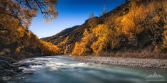 The Arrow River flowing through Arrowtown in autumn, surrounded by beautiful yellow and orange leaved trees. Central Otago, Tree Leaves, Landscape Photos, Autumn, Fall, Orange, Yellow, New Zealand, Arrow