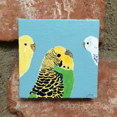 Parakeet Budgie Art by IndigoHeartBox on Etsy