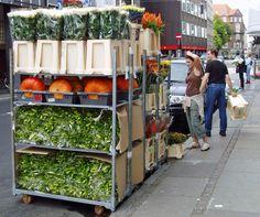 Pumpkins, Copenhagen, Denmark