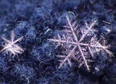 Snowflakes | by LenkaSky