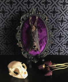 Handcrafted, Victorian style taxidermy.  In an 5.5x 8 black tin baroque wall plaque with gold distress accents feat. a real mummified hanging fruit bat on a beautiful purple velvet damask bed. Perfect for any gothic decor.   **** does not include stand, prop flowers or domestic cat skull. ****  Each piece is made with love & care to best showcase each individual specimen. All of our specimens are ethically sourced and have died of natural causes.    YOU ARE RESPONSIBLE FOR KNOWING YOUR C...