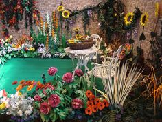 Flower garden by Suzi Mclaughlin at gardeners world.