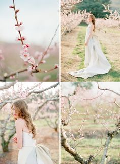 an Ode to Spring… www.jodimillerphotography.com