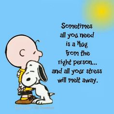 Sometimes all you need is a hug from the right person. and all your stress will melt away. Snoopy Hug, Snoopy Love, Snoopy And Woodstock, Peanuts Snoopy, Great Quotes, Funny Quotes, Life Quotes, Inspirational Quotes, Motivational