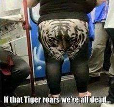 If that tiger roars, we're all dead ...