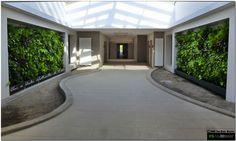 http://www.mur-vegetal-interieur.fr/