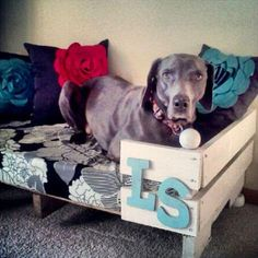 upcycled pallet dog bed