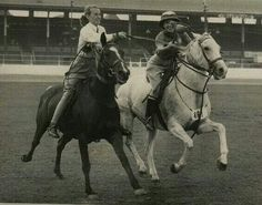 75 yrs since the first polocross expo...wow look how far we've come
