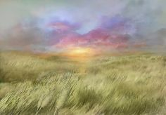 """Plains"", by Nils Hamm"