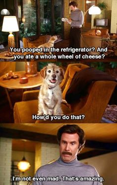 Anchorman and Will Ferrell. Combining my love of broadcast and Will Ferrell seamlessly. Tv Quotes, Movie Quotes, Funny Quotes, Funny Movies, Good Movies, Funniest Movies, Awesome Movies, Comedy Movies, Awesome Stuff
