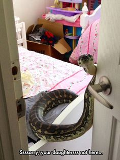 That snake