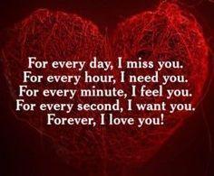 Für jeden Tag vermisse ich dich. Für jede Stunde brauche ich dich . Für jede Minute fühle ich dich. Für jede Sekunde, ich will dich. Ich liebe dich für immer ! ---- For every day , I miss you . For every hour , I need you . For every minute , I feel you . For every second , I want you . Forever , I love you !