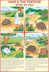 Hare And The Tortoise Story Chart Moral Stories For Kids
