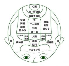 Qigong, Acupuncture Points, Medical Science, Pressure Points, Japan Art, Yoga, Aromatherapy, Health Care, Massage