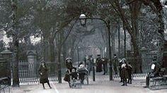 New Walk 1900