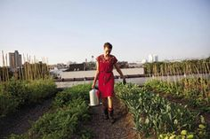 Get Green with These Local Gardening and Farming Classes