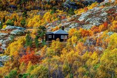 Beautiful autumn colours of Norway Fjord at Aurland Photo by: Kristinn Einarsson #autumncolors #norway #fjordsofnorway