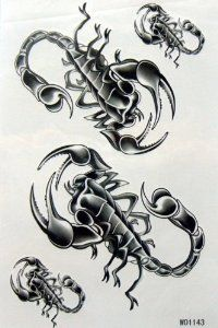 KingHorse Temporary Tattoo for Women and Men and Sweethearts (Animal Insects, Scorpion Pals) by KingHorse. $1.51. Ships from and sold by MicroDeal, MicroDeal® Trademark cleaning cloth around 4.7 Inch, one piece per order.. Fashionable, eye catching designs.. F.D.A, EN71, ASTM or CE approval. Non-toxic.. easily water transfer on and remove by baby oil.. long lasting for 5~7 days.. F.D.A, EN71, ASTM or CE approval. Non-toxic.Fashionable, eye catching designs.long l...