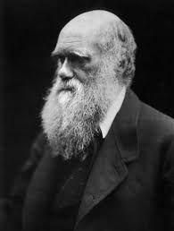 """Résultat de recherche d'images pour """"darwin"""""""