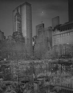 Photographer Suffering From Terrible Insomnia Captures Haunting Pics Of Central Park When There's No People By Dominyka Jurkštaitė  Half Moon, 2009