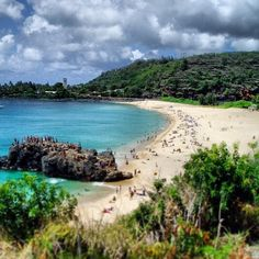 Search, Discover and Explore Waimea Bay with Professor Beach. Holiday and Vacation at Waimea Bay, Hawaiian Islands - Oahu, one of the Worlds Best Beach Towns. Waimea Bay, Oahu Hawaii, Visit Hawaii, Waikiki Beach, Sunset Beach, Beach Bum, Turtle Beach, Blue Crush, Islands