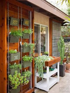 Herbs thrive in repurposed aluminum ammunition boxes -- found at a military surplus store -- suspended from chains against a wall./