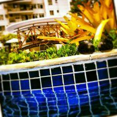 #summer #rio #Brasil