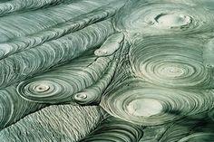 spirals - Rotoura, New Zealand