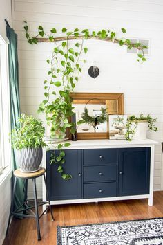 Western Home Decor Do you love boho style homes? Chances are, training indoor plants are a staple in the photos you love! Learn how to care for and style indoor climbing plants. Ivy Plant Indoor, Best Indoor Plants, Plants On Wall Indoor, Indoor Plant Decor, Hanging Plants, Room With Plants, House Plants Decor, Home Plants, Indoor Climbing Plants
