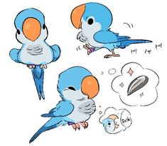 Drawing Animals Ideas Animal character design, birds, quaker parrot — by Zooque — Find more drawing… - Bird Drawings, Cute Drawings, Cute Animal Drawings Kawaii, Drawing Birds, Drawing Animals, Animal Sketches, Art Sketches, Sketch Drawing, Parrot Drawing