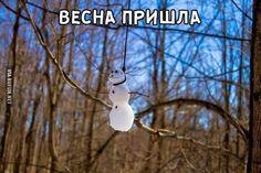Весна пришла ...  #весна