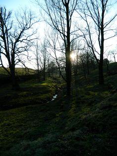 Lyme Park.  Disley, Cheshire, UK.