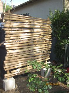 this is a bamboo screen I made to hide garbage cans and other stuff on side of house