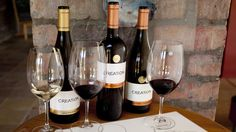 All the info about Wine tasting at Creation Wine Estate in Hermanus, South Africa Wine Vineyards, Wine Tasting, Red Wine, South Africa, Vines, Cape, Alcoholic Drinks, Glass, Mantle