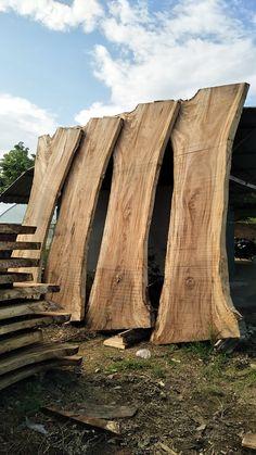 Large Size Monkeypod / Rain Tree Wood Slabs Vertical Laying on The Ground ไม้ฉำฉาแผ่นเดียวขนาดใหญ่ ขนาด 90x300 cm หนา 3 นิ้ว สภาพไม้ดิบรอเข้าเตาอบไล่ความชื้นก่อนจะทำการขัด พ่นเคลือบสี ในกระบวนการถัดไป