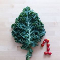 #playwithfood #kale #first