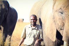 Walking with the elephants,,an incredible experience!