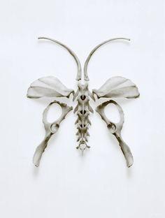 bone bug by RJ Muna
