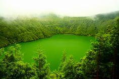 #sealadventures @sealadventures #travel #voyage #aventure #adventure #journey #trip #photography #photographer #vacances #voyages #landscape #acores #azores #açores #volcano #volcan #blue #green #europe #portugal #lac #lake #cratere #bleu #vert #fleur #flower